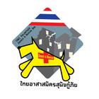 Tvsd logo